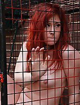 Slave #21 Caged